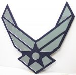 Air Force Mirror Logo Air Force