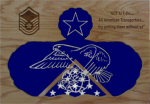 All Functional Badges Air Force Shadow Box